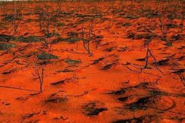 desolation2